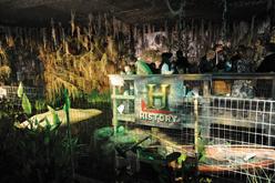 "History ""Swamp People"" Exhibit in NY"