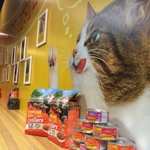 Friskies Kitchen Signage 2015