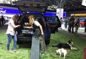 2017 Auto Show_8