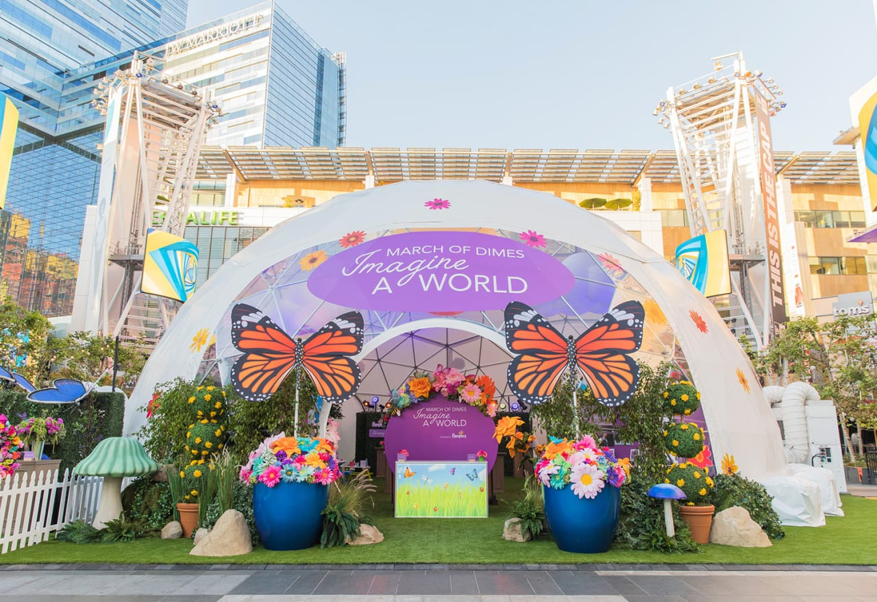 March of Dimes' First Experiential Activation Helps Drive an 80th Anniversary Rebranding
