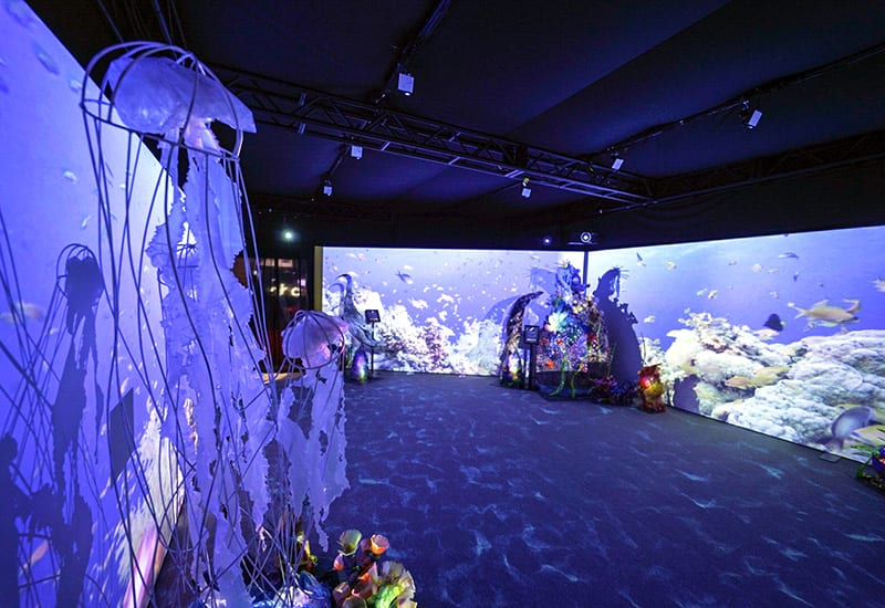 Experience Design: Inside National Geographic's Ocean-Inspired Activation at D23 Expo